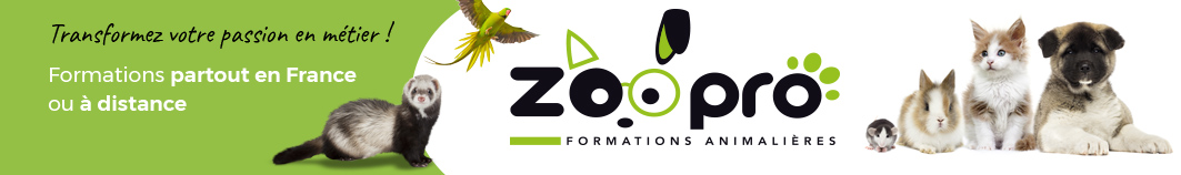 zoopro formations animaux