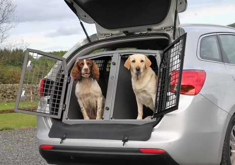 formation transport chiens et chats